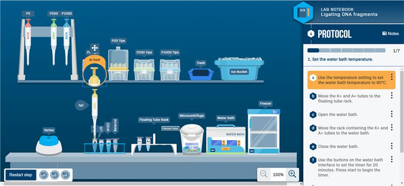 Lab scene layout for the Ligating DNA fragments simulation