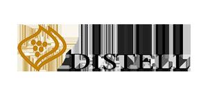Hubble-Studios-Online-Learning-Distell